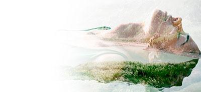 Imagen de fondo naturaleza